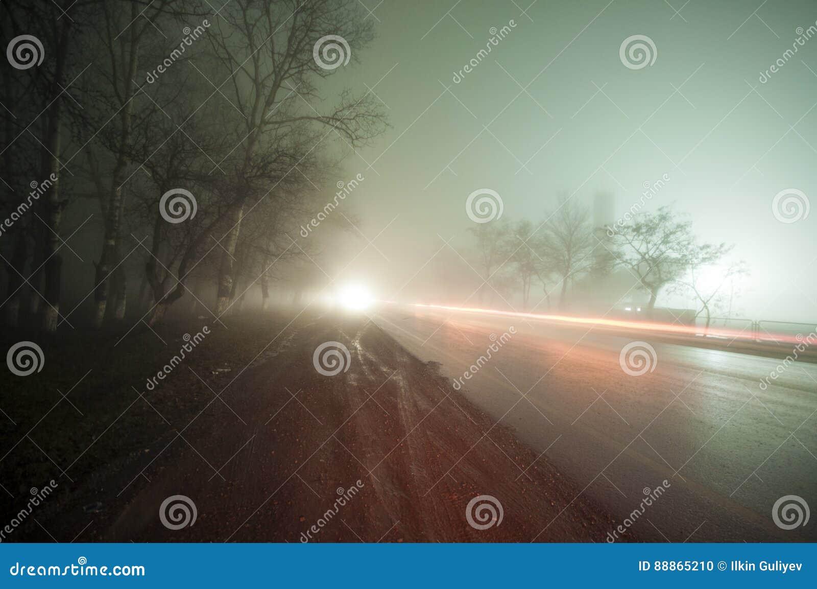 Härligt nattlandskap av den dimmiga vägen i en mörk skog efter regn _