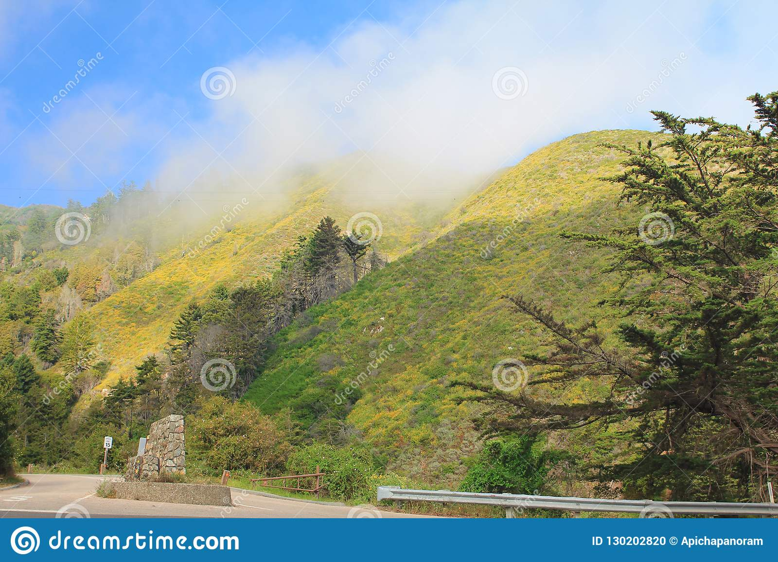 Härligt naturligt berglandskap på nationalparken i USA