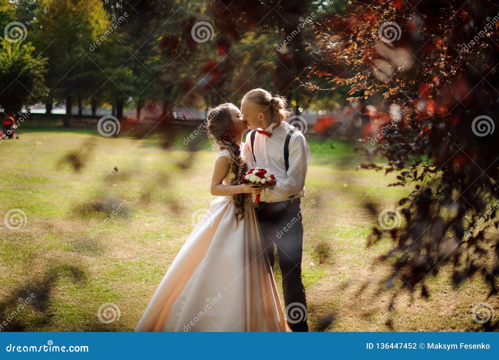 Härligt och ungt gift par som kysser på ett fält för grönt gräs med träd