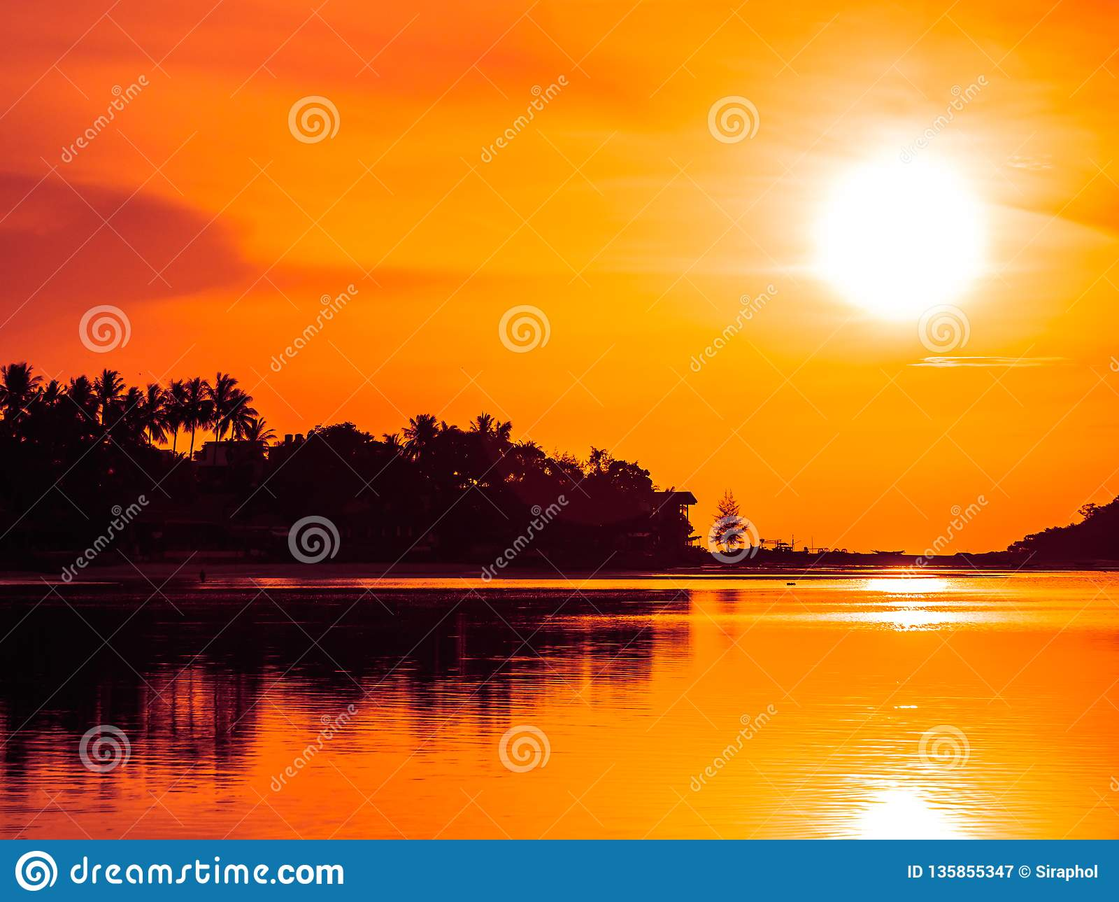 Härligt tropiskt strandhav och hav med kokosnötpalmträdet på soluppgångtid