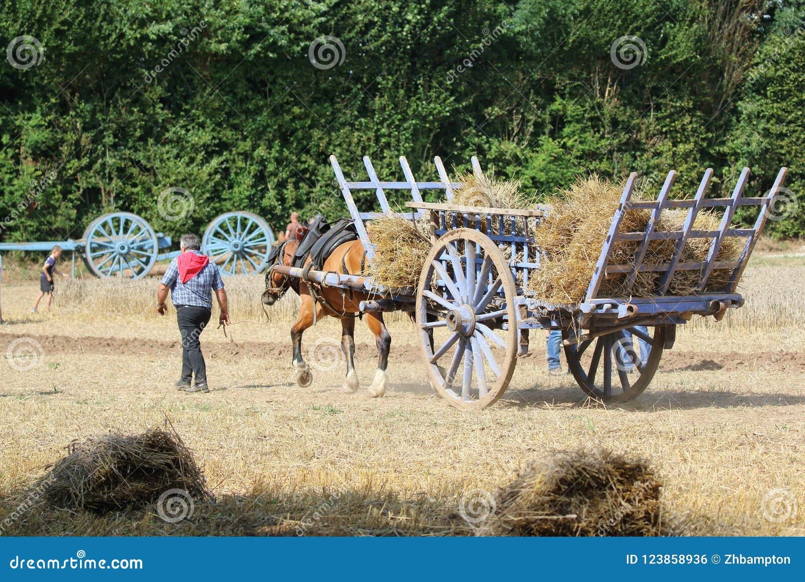 Häst och vagn med sugrör