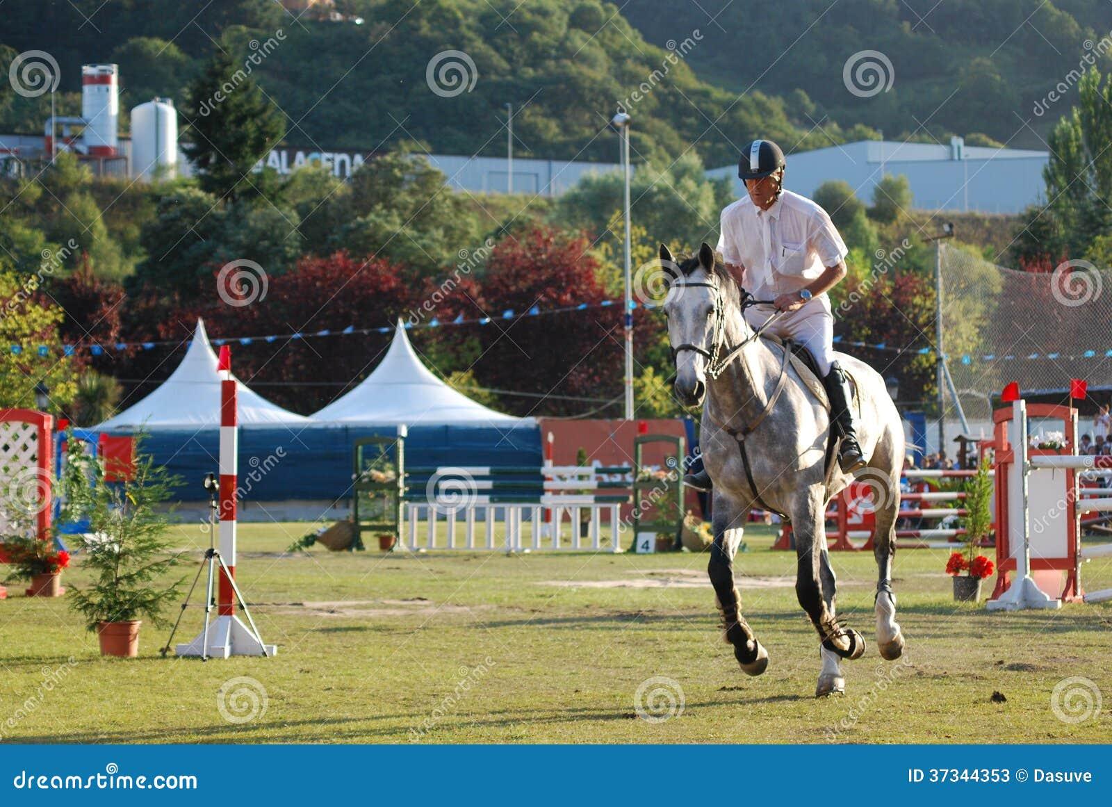 Hästen hoppar showmästerskapet Asturias