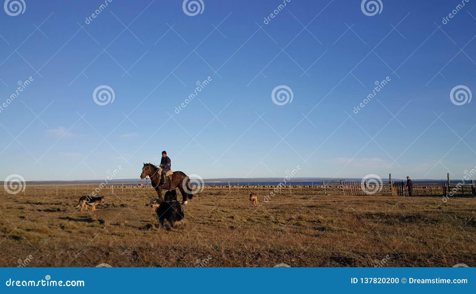 Hästryttaren - den stora ön av land av brand - ingenmansland långt från civilisation