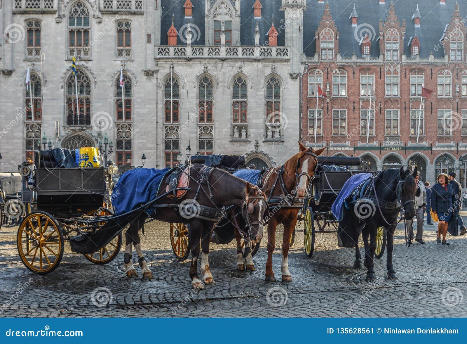 Hästvagn i den härliga Bruges staden, Belgien