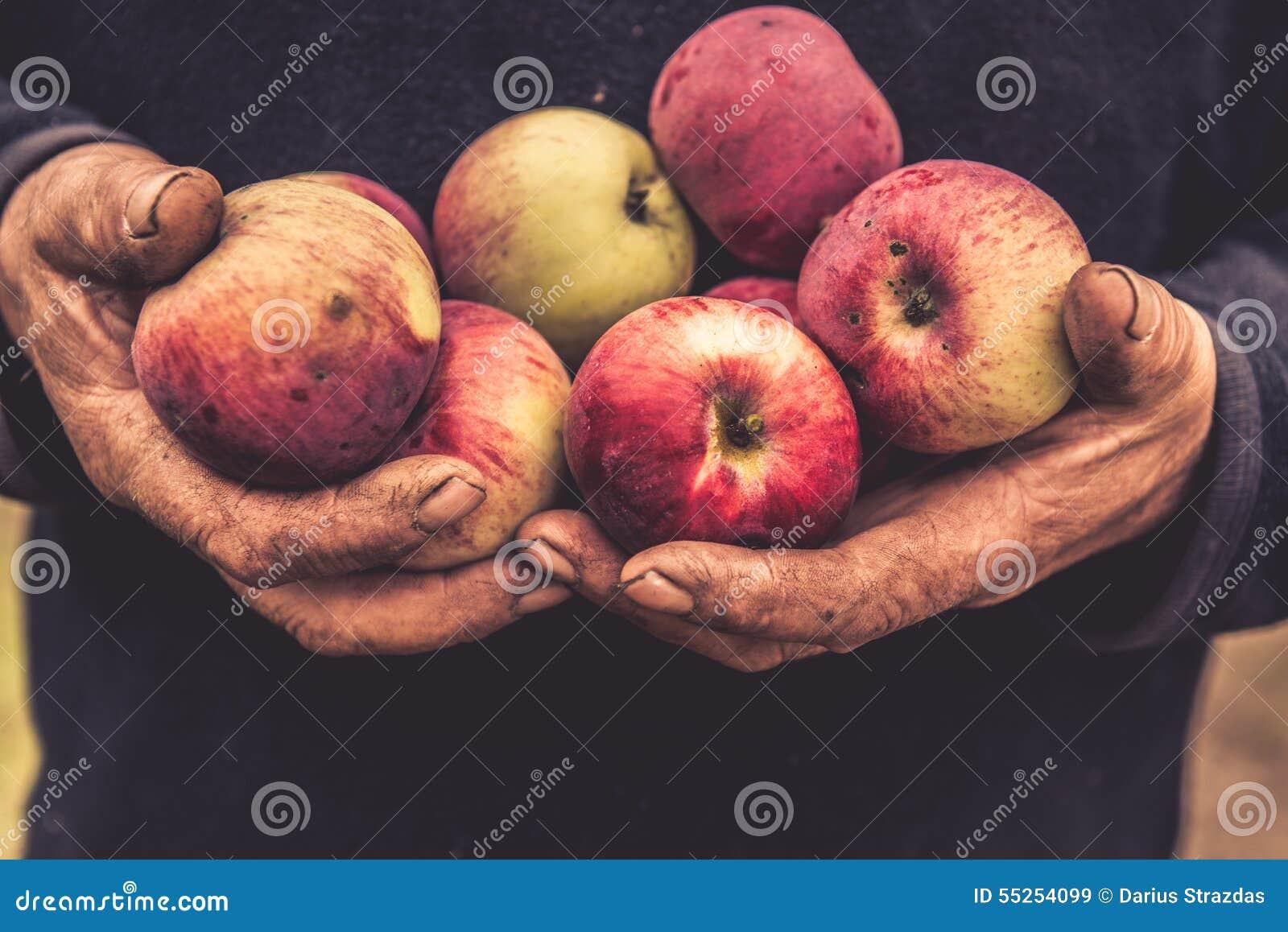 Hålläpplen för gamla händer