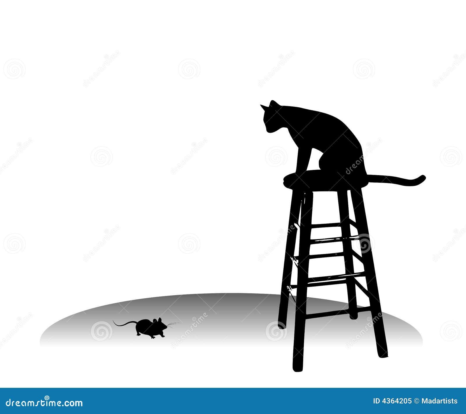 Hålla ögonen på för kattmusstol