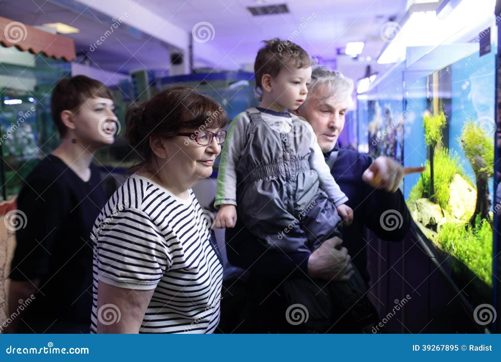 Hållande ögonen på fiskar för familj