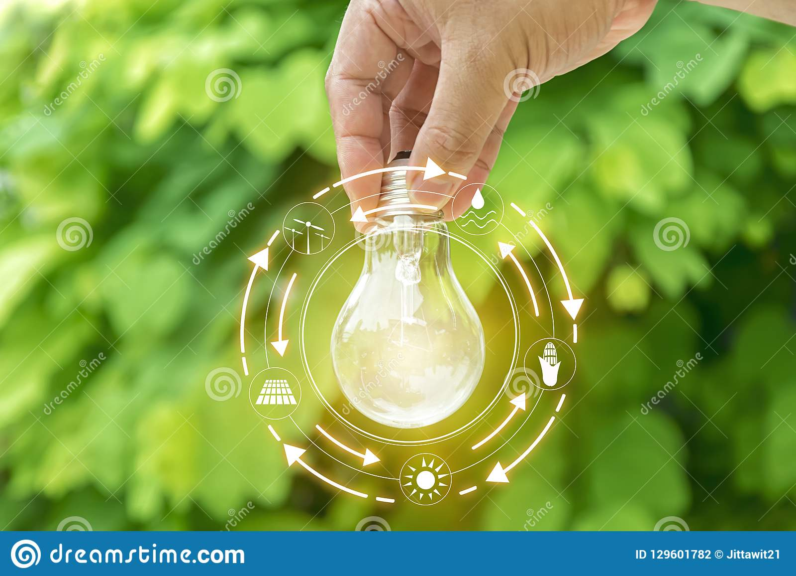 Hållande ljus bulbt för hand många begreppsekologibilder mer min portfölj