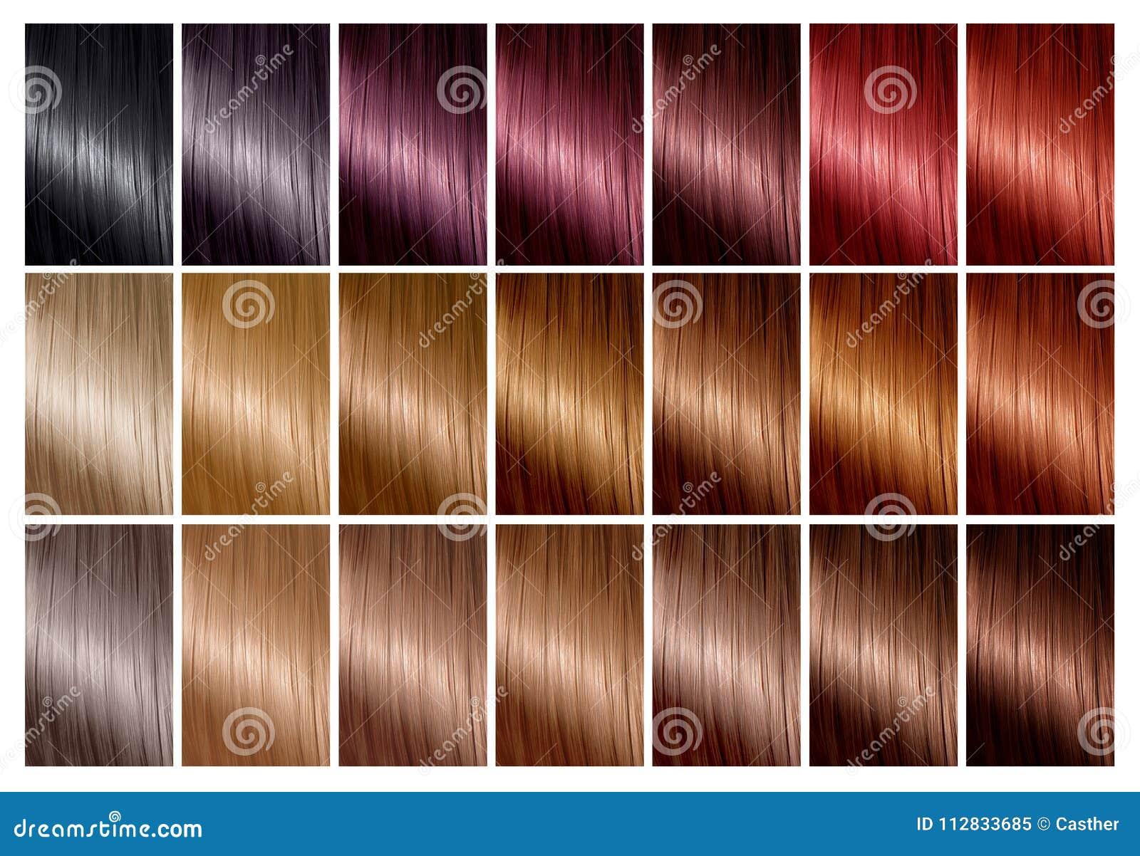 Hårfärgpalett med ett område av provkartor toner Färgdiagram