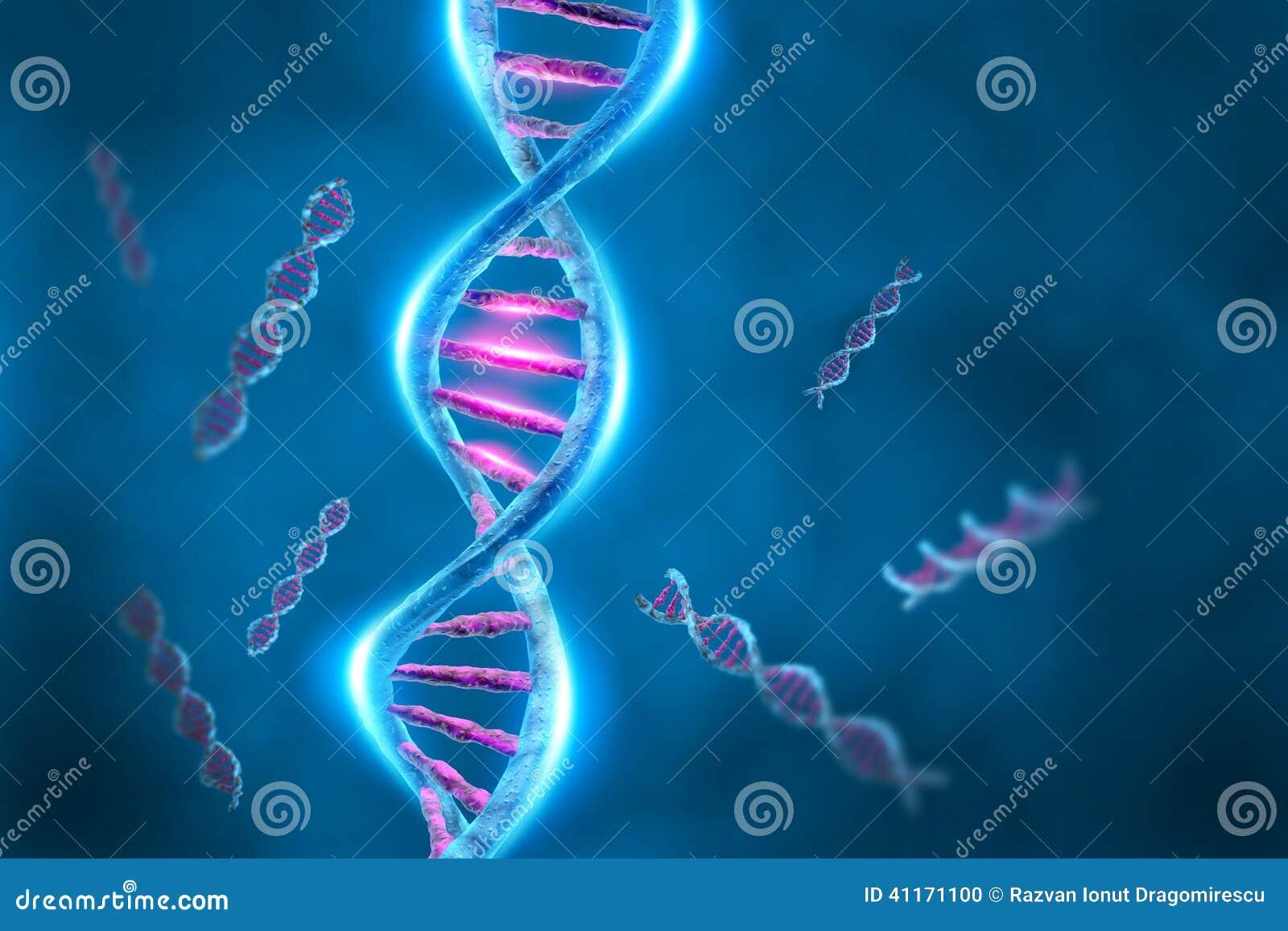 Hélice de la DNA