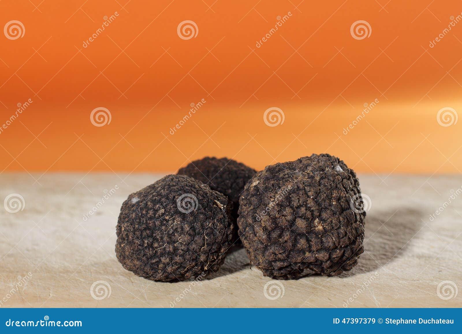 Höchst parfümiert von den Pilzen, die französische schwarze Trüffel