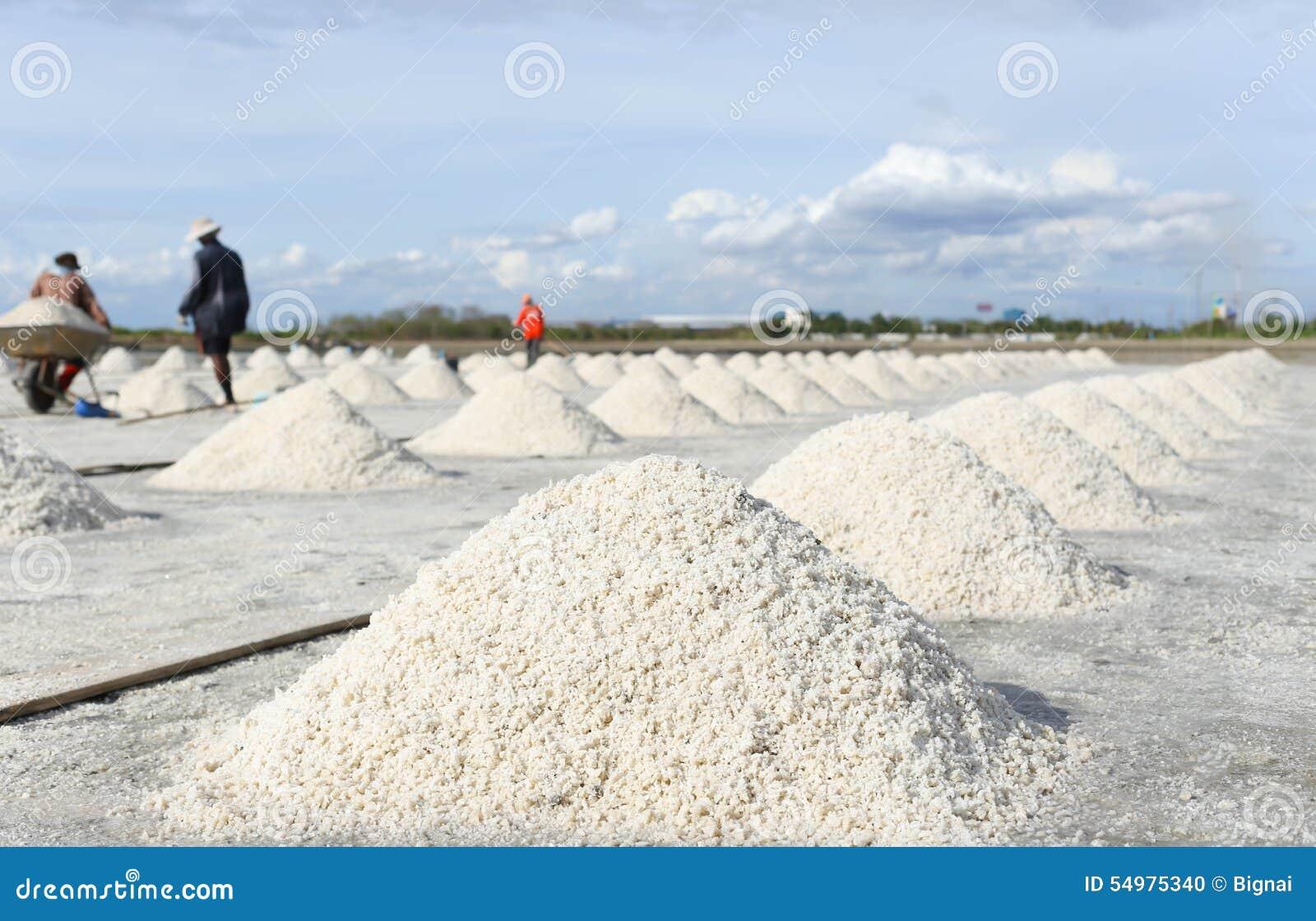 Hög av salt i den salta pannan i Thailand