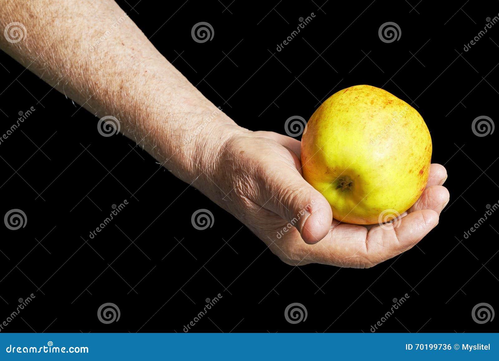 Hög hand