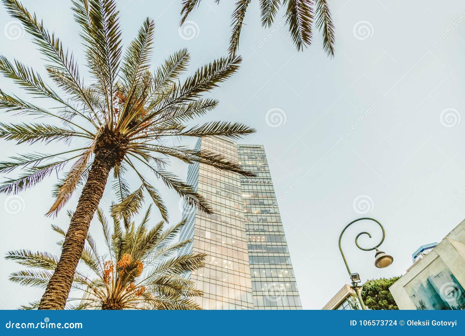 Hög stads- byggnad för israeliskt kontor i Tel Aviv Rothschild boulevard Loppstad och affärsmitt