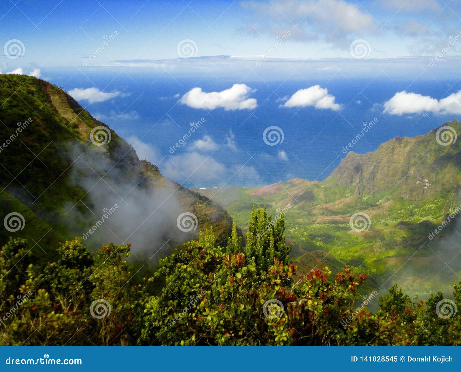 Hög-vinkel sikt av Kauai, Hawaii dal