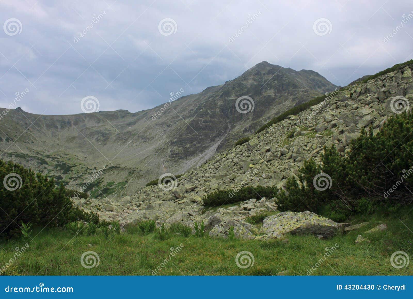 Download Högt berg arkivfoto. Bild av maximum, utomhus, rock, green - 43204430