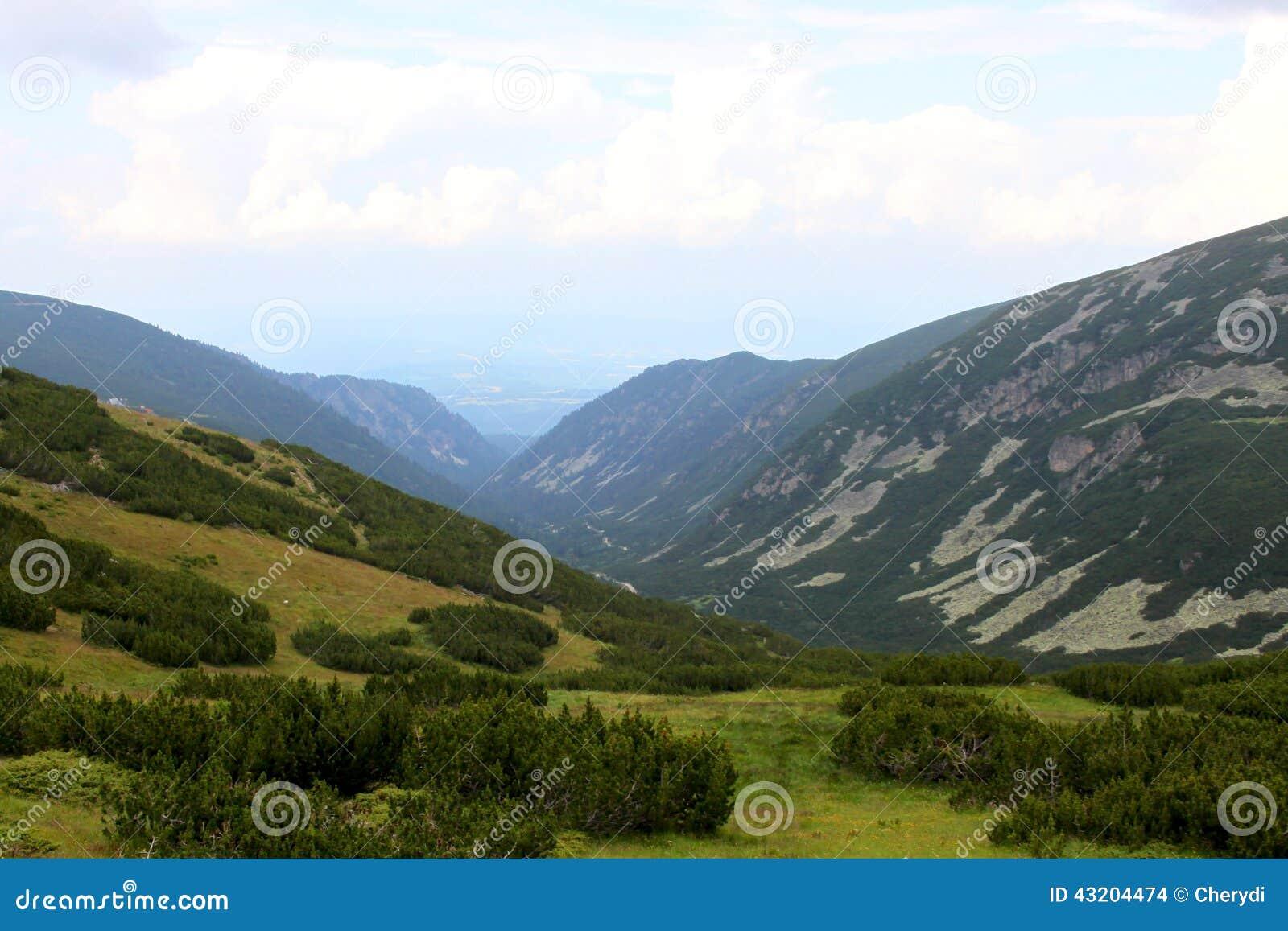 Download Högt berg arkivfoto. Bild av nytt, stillhet, naturligt - 43204474