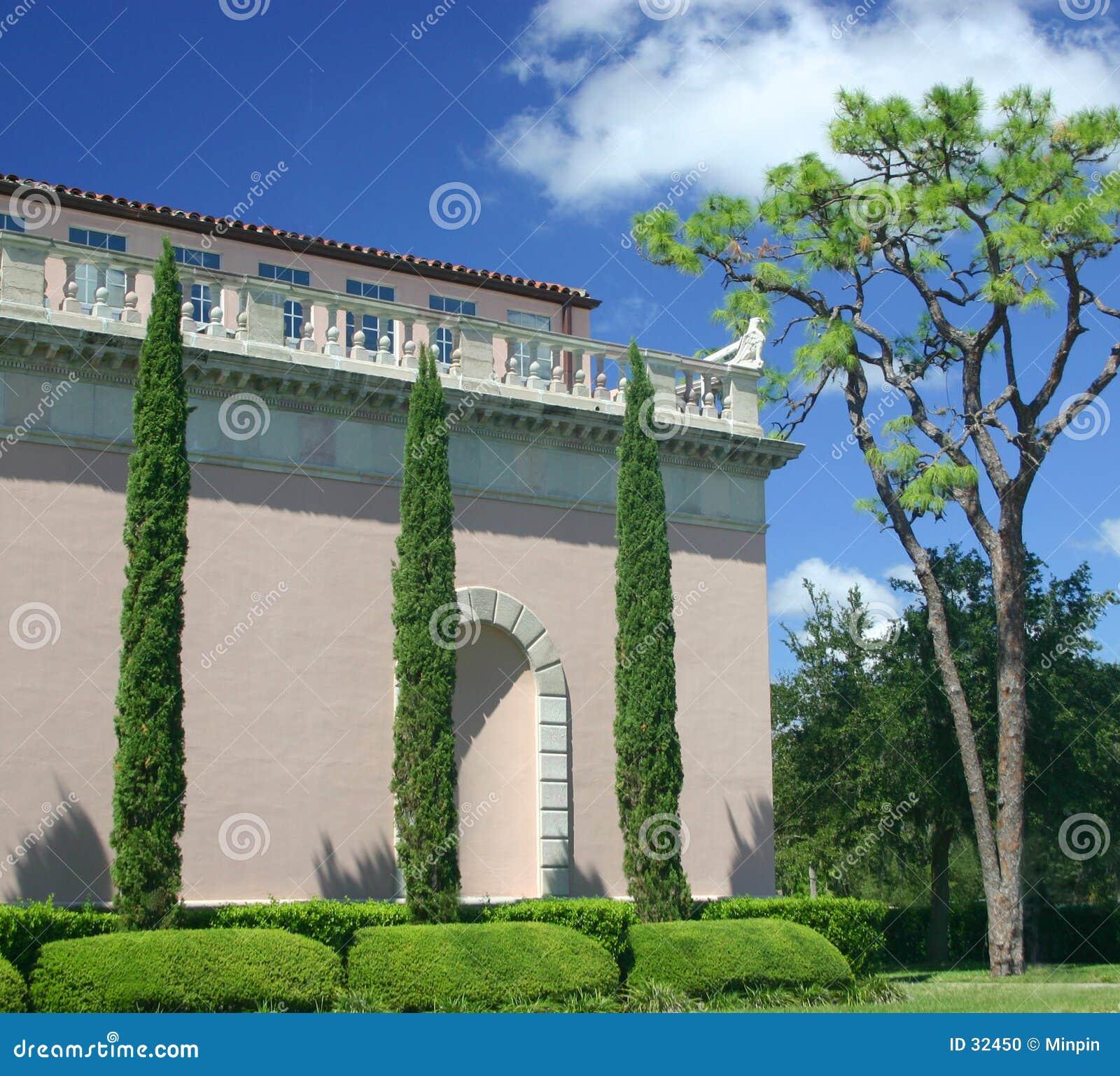 Högväxt trees