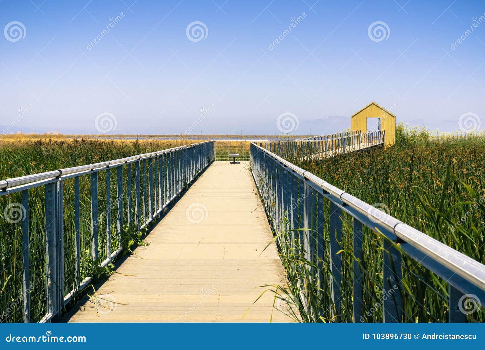 Hölzerne Promenade durch den Sumpf bei Alviso Marina County Park, San Jose, Kalifornien