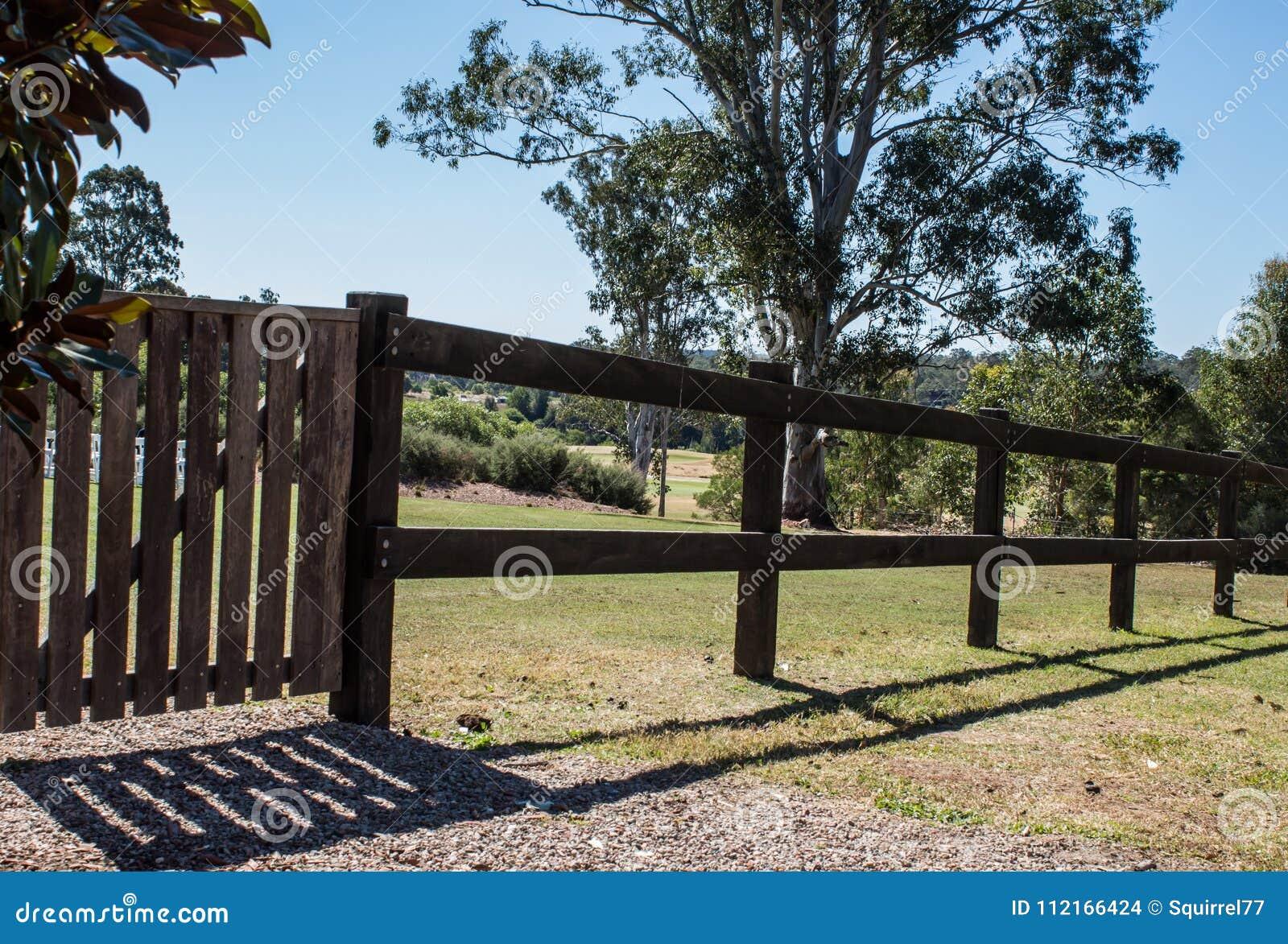 GroBartig Download Hölzerner Ländlicher Zaun Und Tor Im Sonnenschein Mit Bäumen Im  Hintergrund Stockfoto   Bild Von