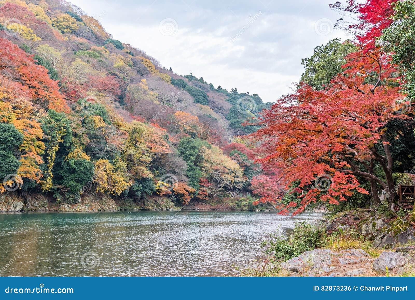 Höstfärger kryddar i Arashiyama, Kyoto, Japan