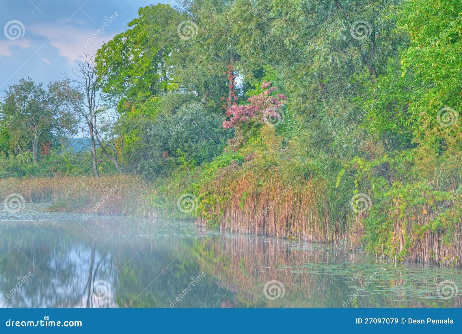 HöstShorelineWhitford Lake