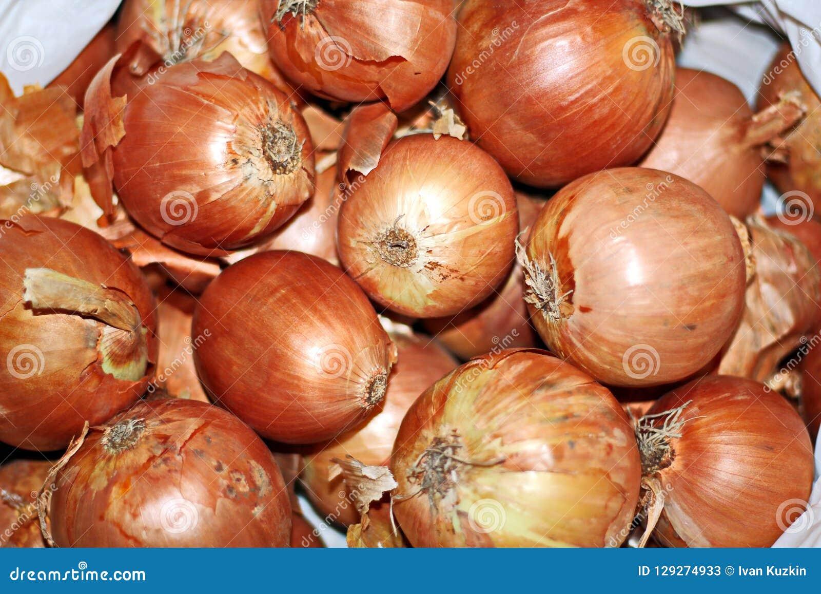 Höstskörd av grönsaker och fruktnärbilden