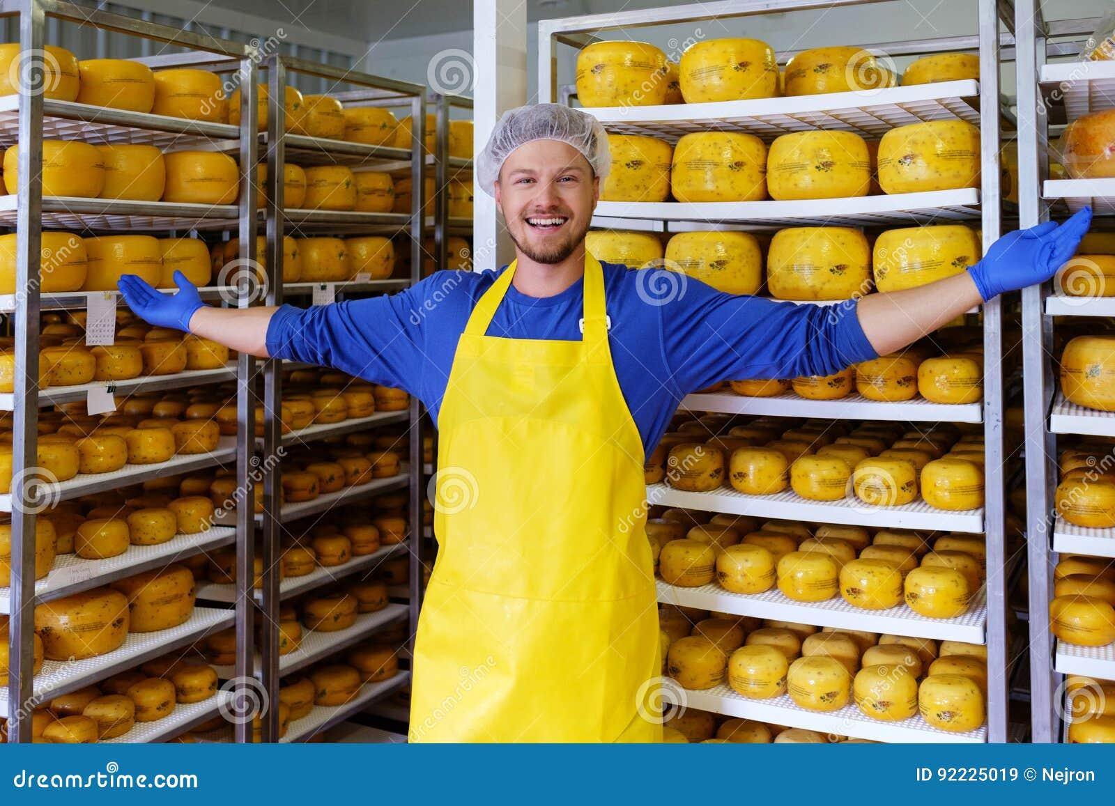 Hübscher Käsehersteller überprüft Käse in seinem Werkstattspeicher
