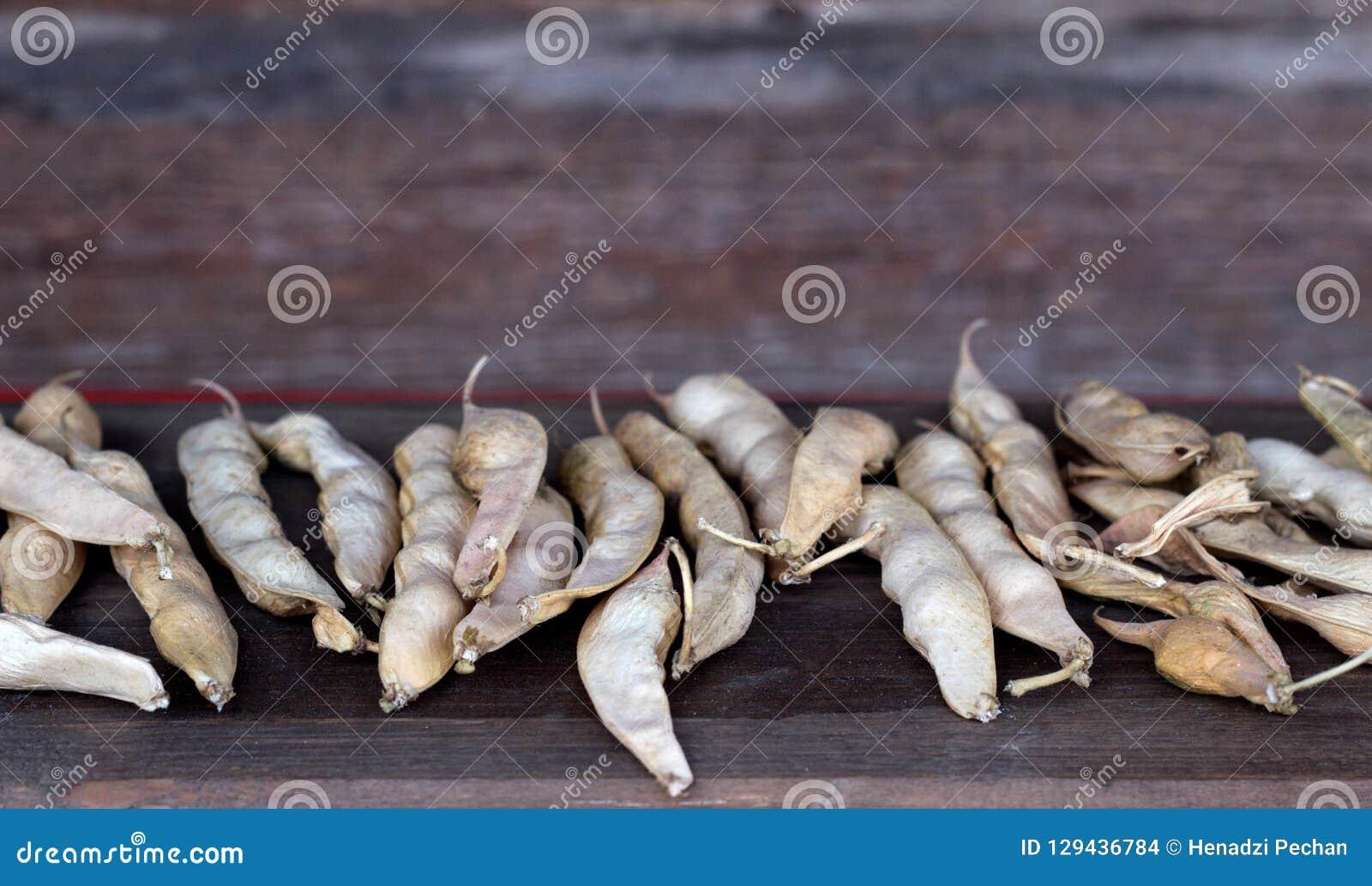 Hülsen von getrockneten Bohnen auf einem hölzernen Hintergrund, Nahaufnahme, Kopieraum