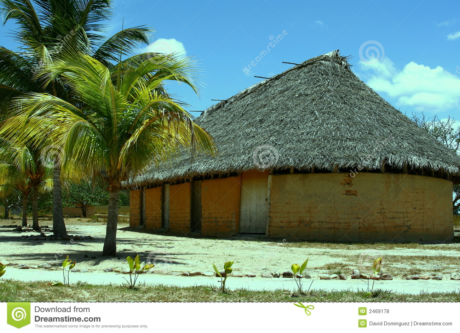 Hütte und Palme