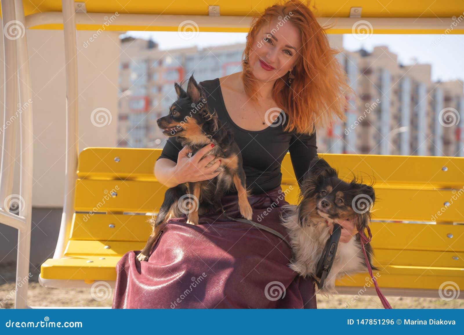 H?bsche gl?ckliche redheaded Frau mit zwei wenigen Hunden auf der gelben Sommerbank