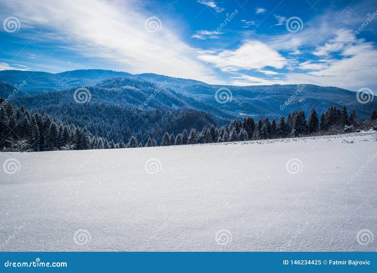 H?rliga vinterlandskap med skogen, tr?d och solen En vinter och en solig dag p? berget Bl? sky i bakgrunden