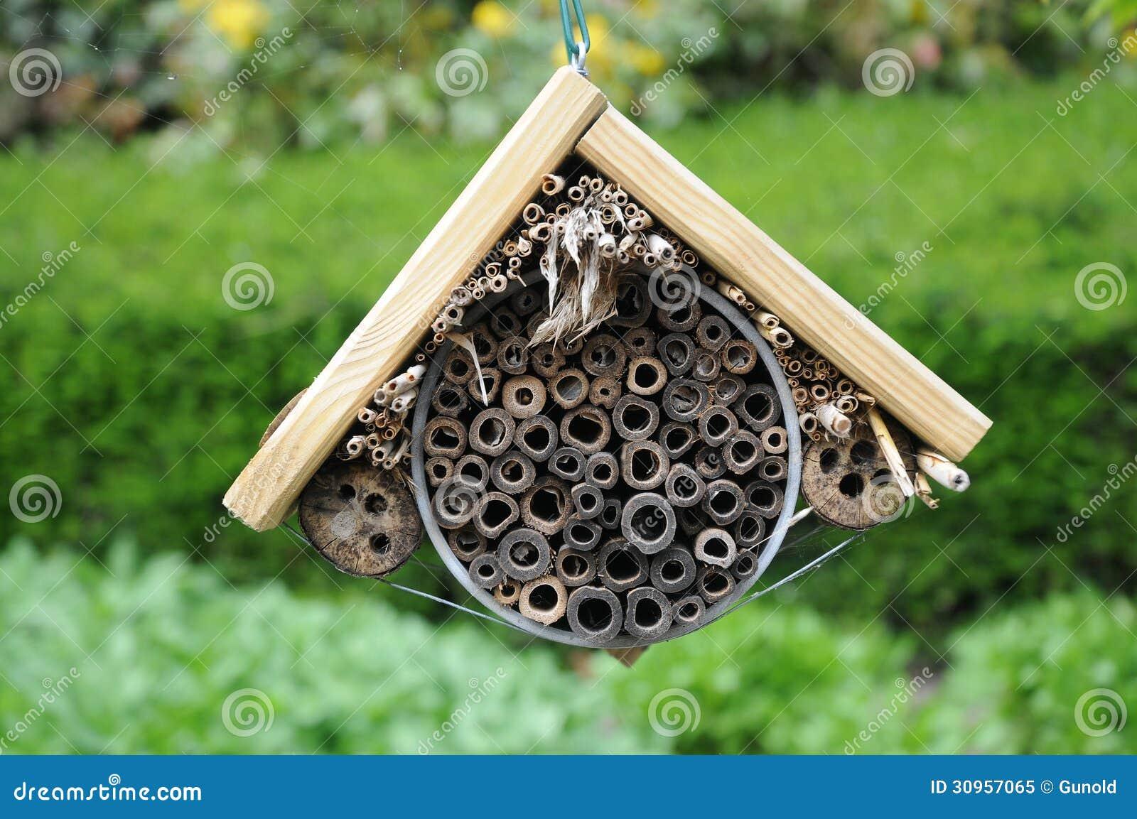 Hôtel d insecte