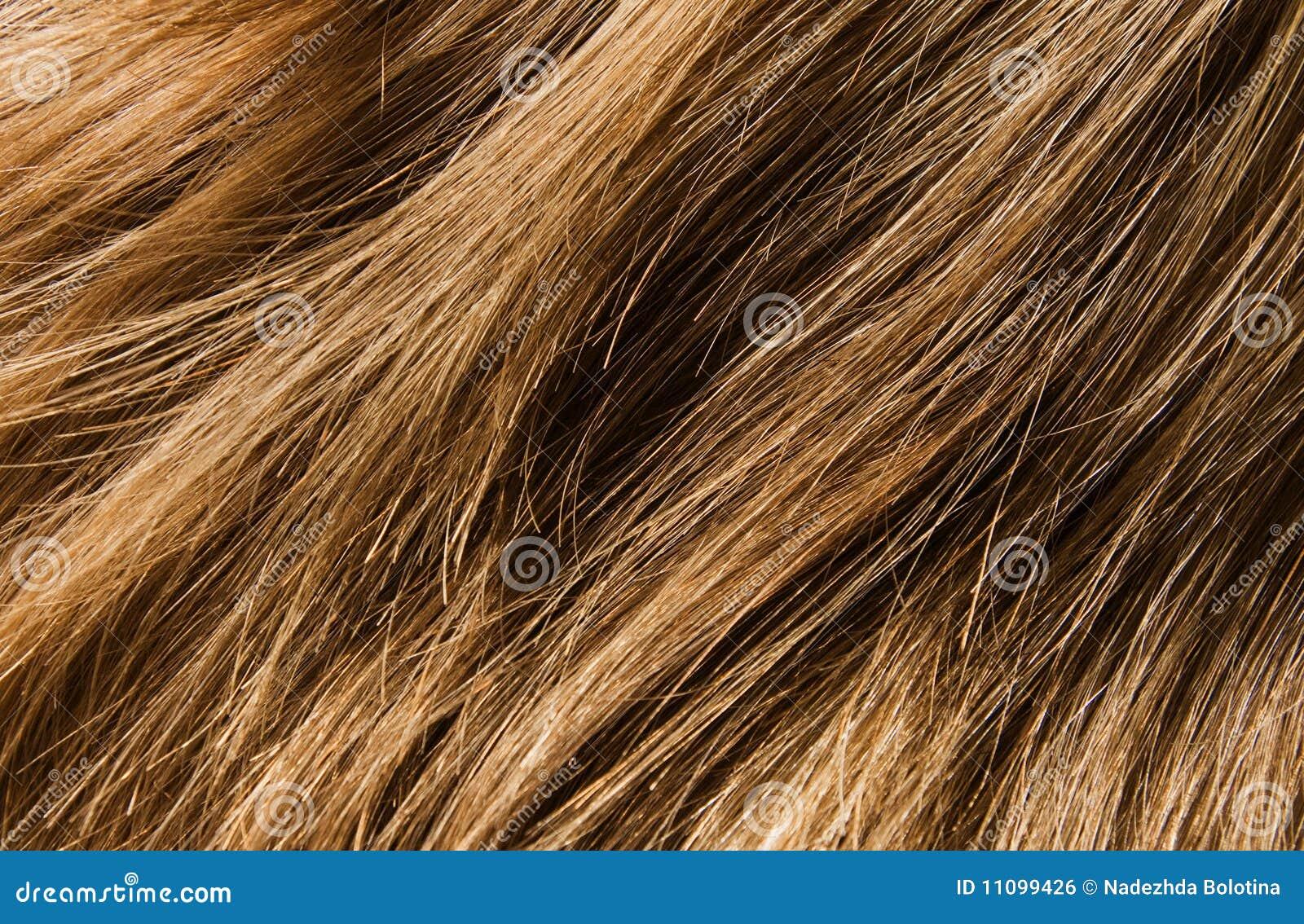 Haarbeschaffenheit