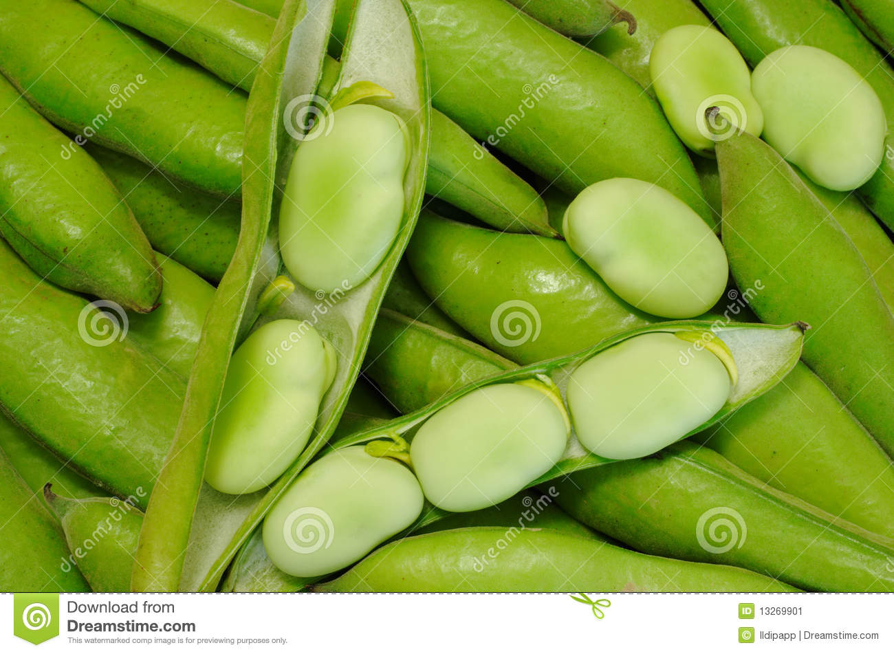 Habas Peruvian Green Beans Stock Image Image Of Various Side