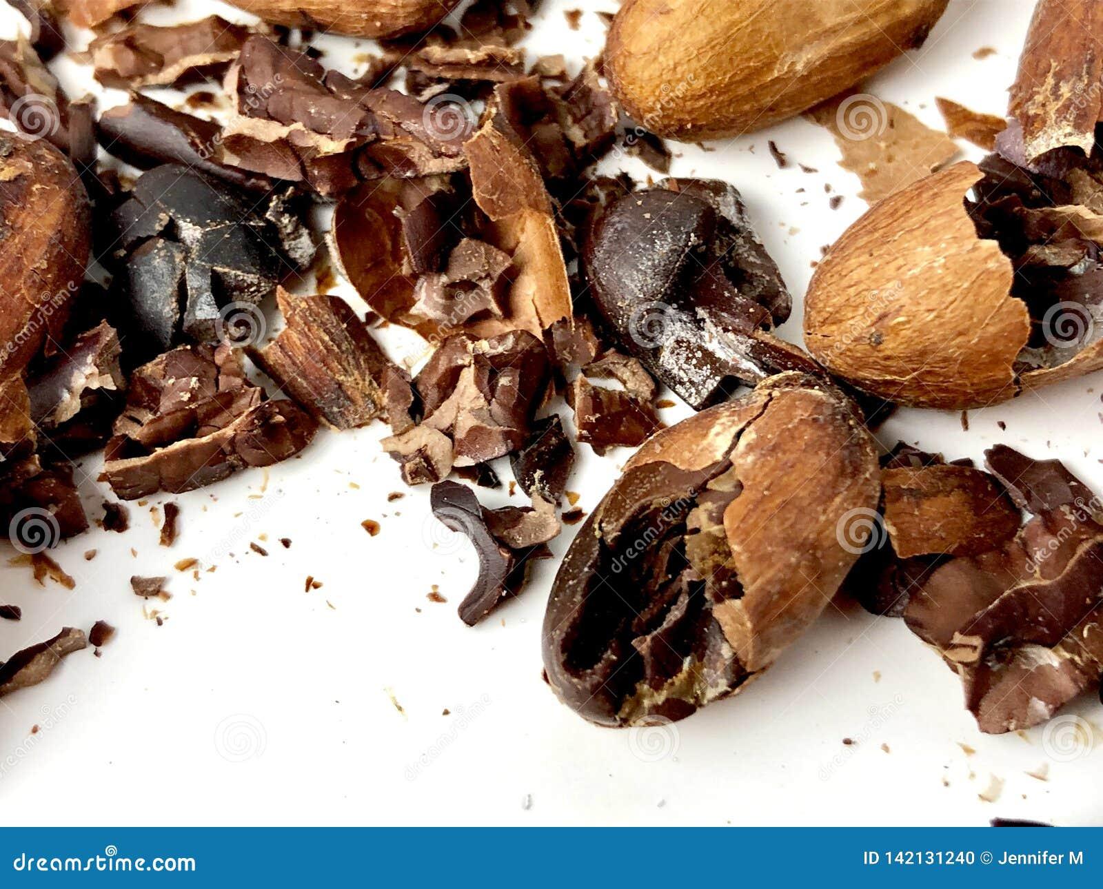 Habas y semillas del cacao