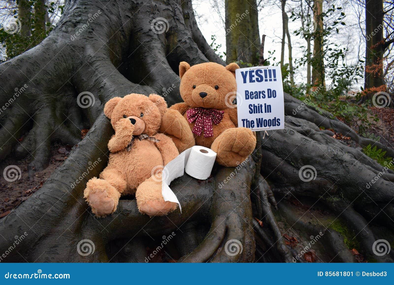 Hacen los osos cagados en el bosque