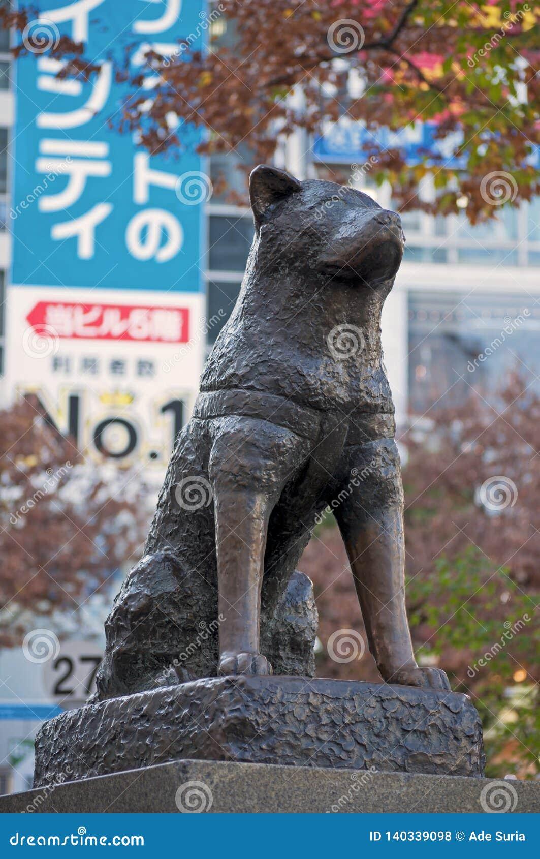Hachiko-Statue in Shibuya, Japan