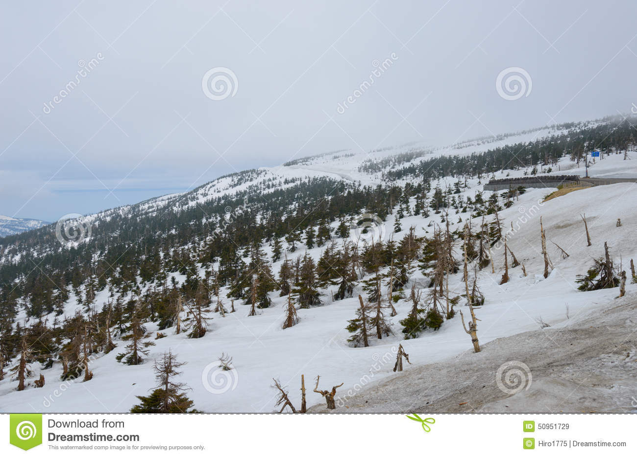 hachimantai aspite line in early spring stock image - image of
