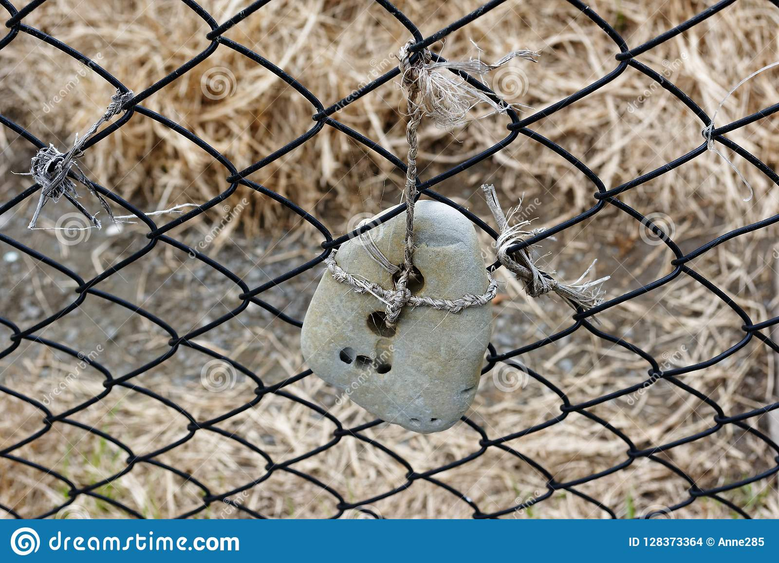 Hag Stone Photos Free Royalty Free Stock Photos From Dreamstime Throughout history, the hag stone has been thought of as one of the most spiritual stones available. https www dreamstime com hag stone hanging fence cord holes stone lucky hag stone hanging fence beach image128373364