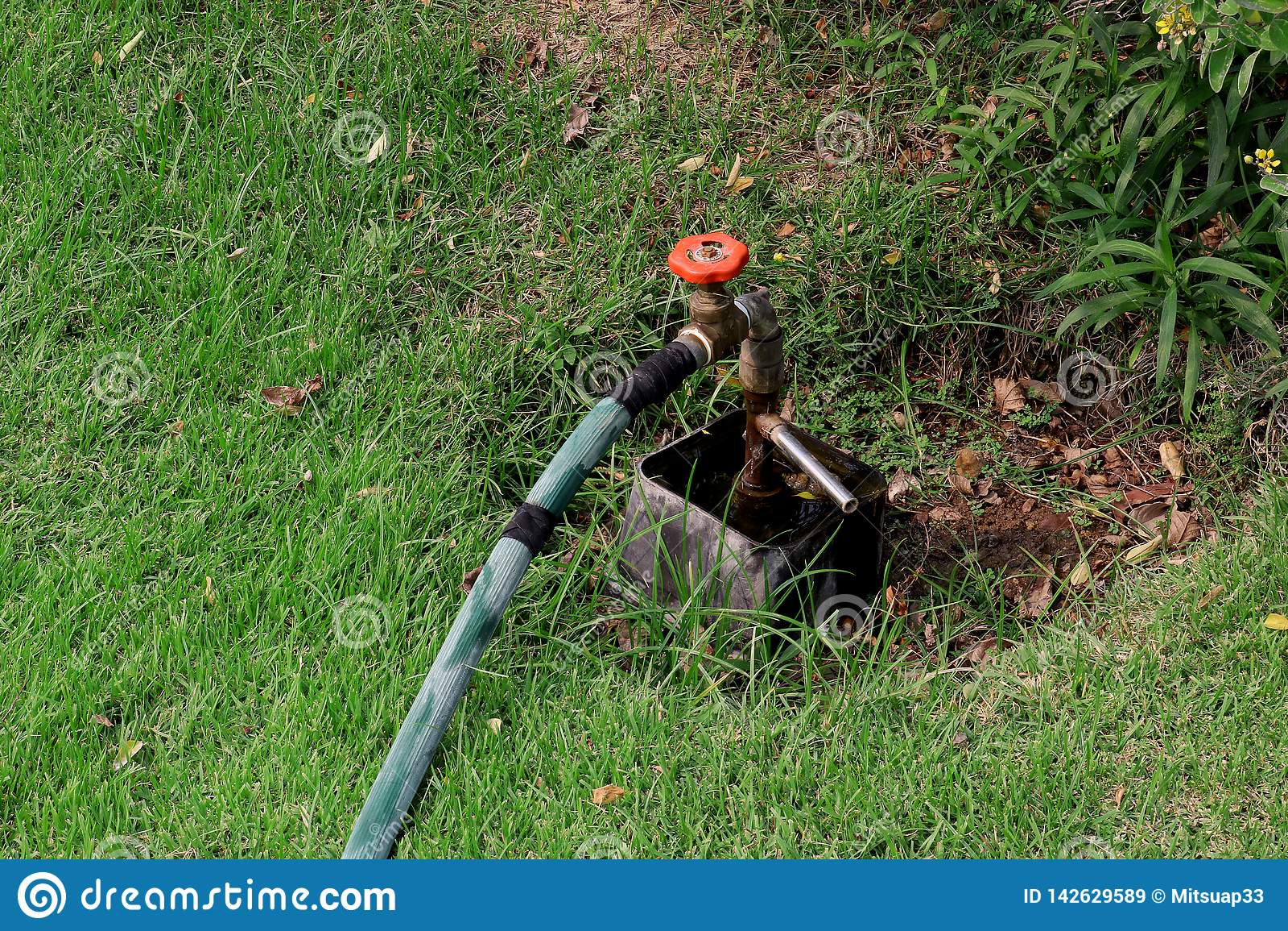 Hahn-Wasser vom Hahnwasserventil, Schieber im grünen Garten