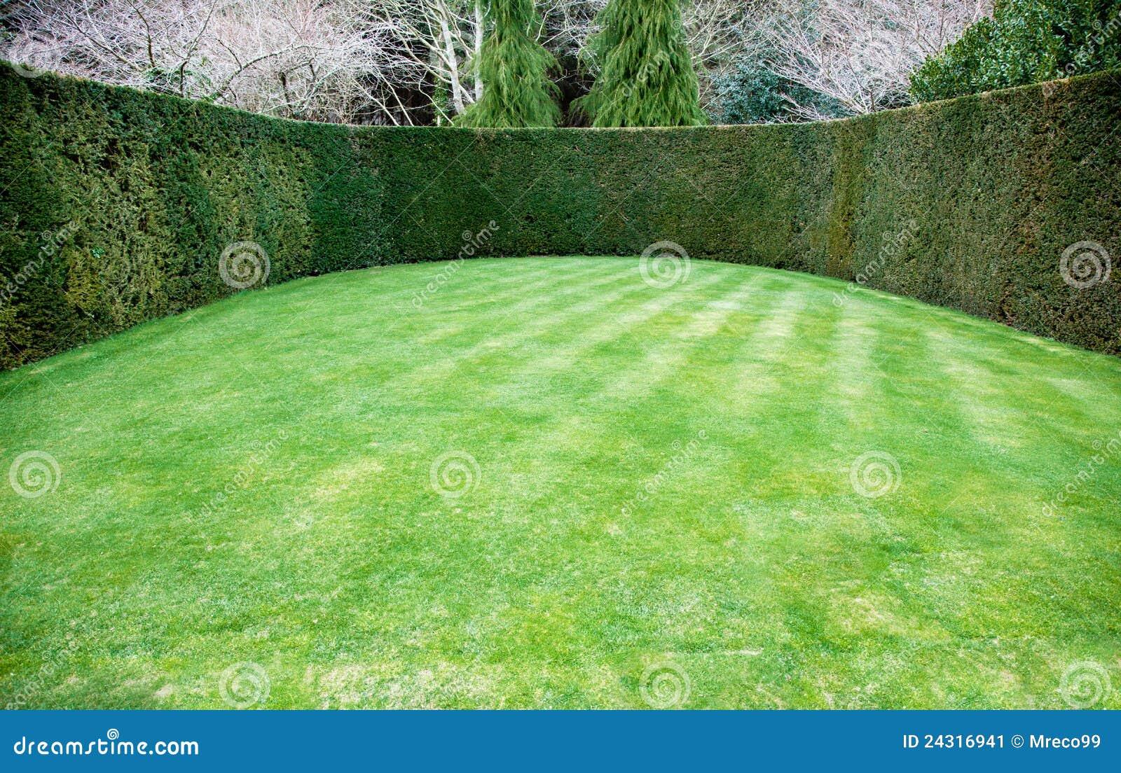 Haie garnie autour de pelouse ovale image stock image for Haie de jardin moderne
