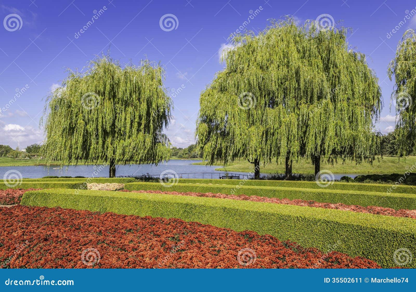 haie verte avec des fleurs image stock image 35502611. Black Bedroom Furniture Sets. Home Design Ideas