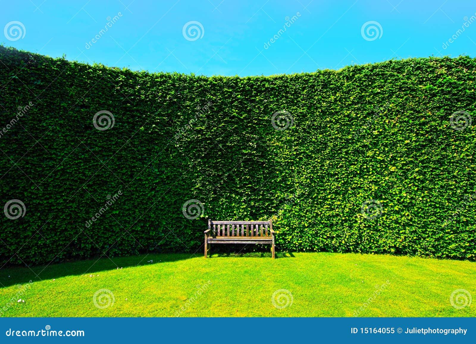 Haies de jardin avec un banc