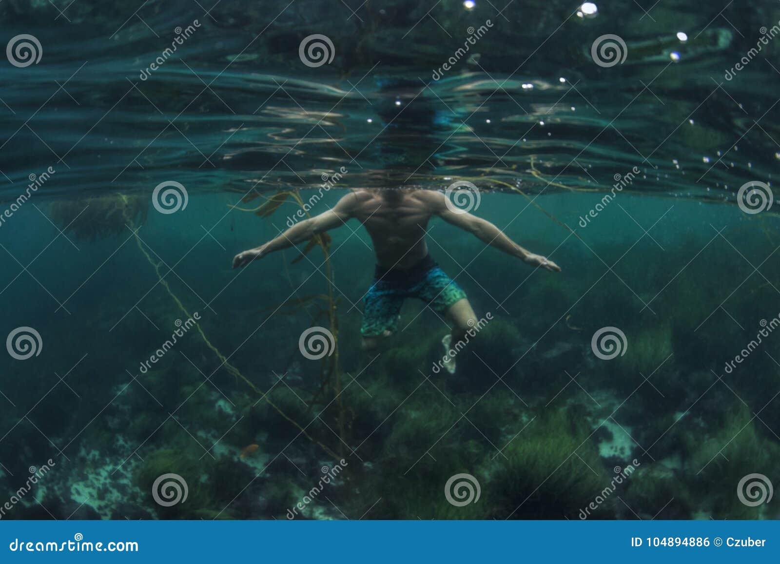 Haifisch P O V vom Schwimmerwassertreten im seichten Wasser von Ozean