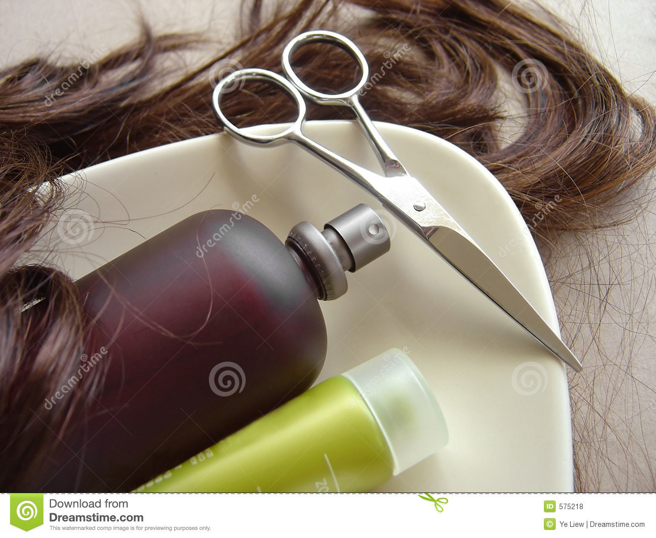 Download Hair Care 3 stock photo. Image of conditioning, girl, dark - 575218