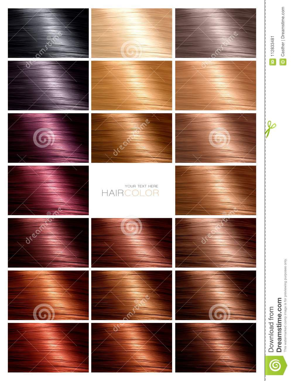 Hair Color Palette With A Range Of Swatches Stock Image Image Of