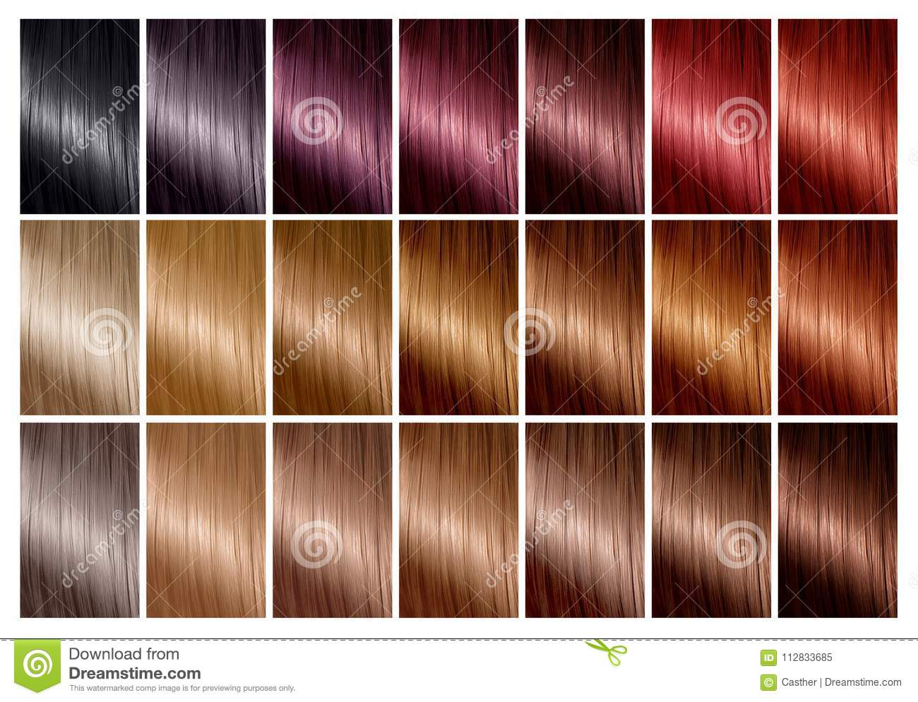 Hair Color Palette With A Range Of Swatches Tints Color Chart
