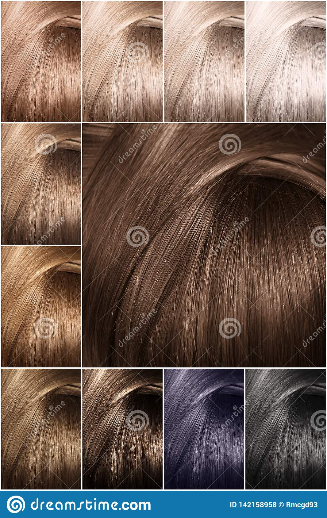 Hair Color Palette With A Wide Range Of Swatches. Dyed Hair ...