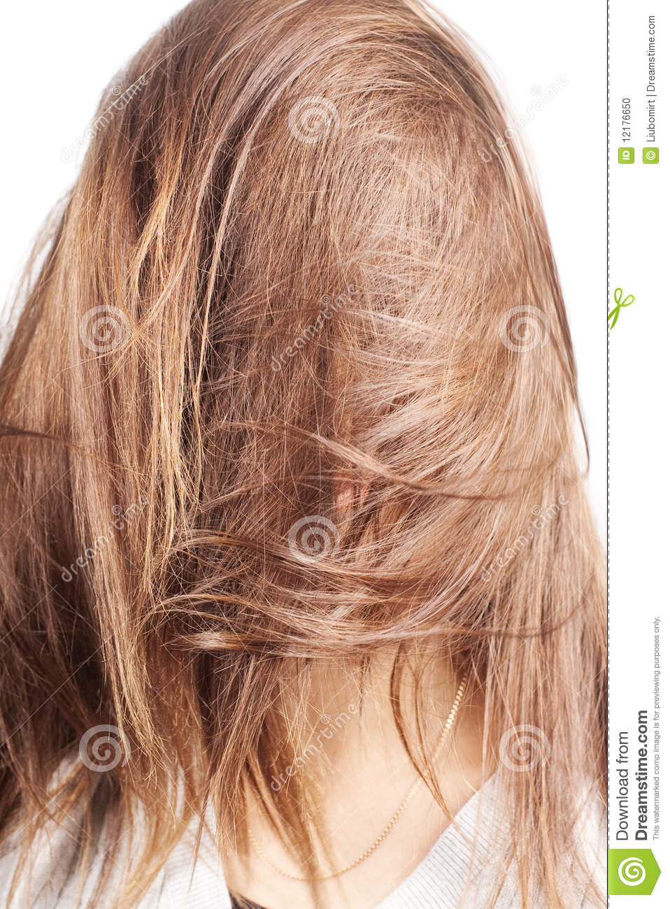 Chestnut natural long hair covering face of a woman with selective ...